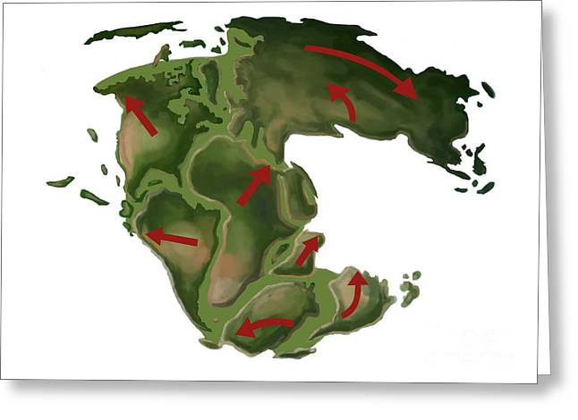 Pangaea Greeting Card by Spencer Sutton