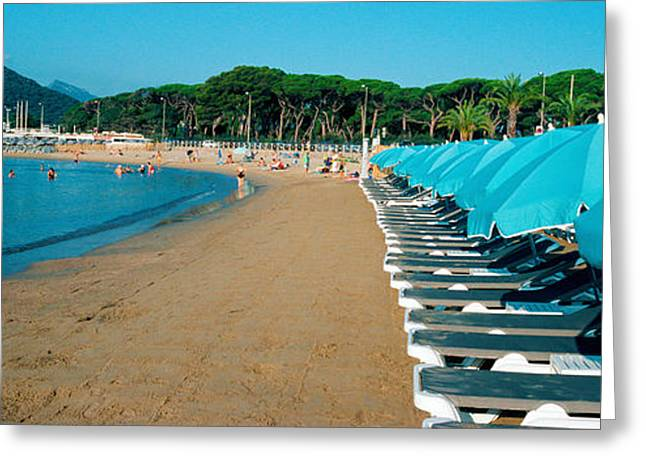 Parasols With Lounge Chairs Greeting Card by Panoramic Images