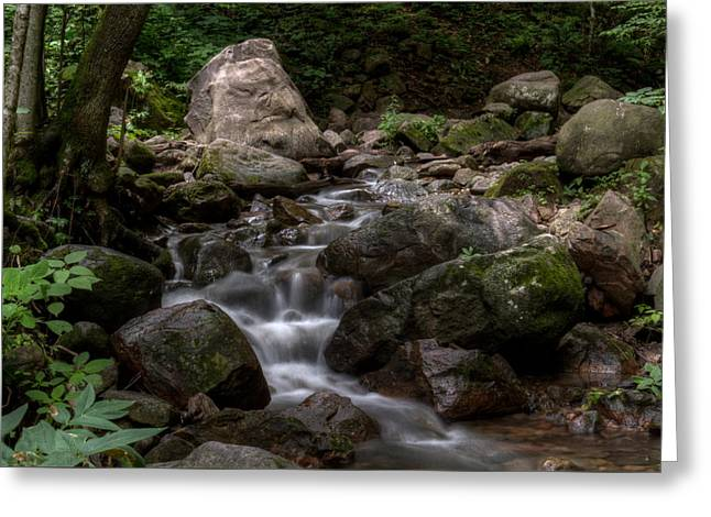 Parfrey's Glen Creek Greeting Card