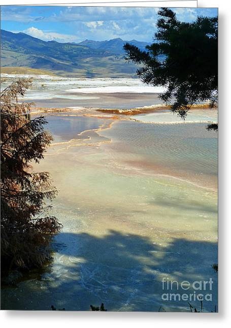 Pastel Greeting Card by Lauren Leigh Hunter Fine Art Photography