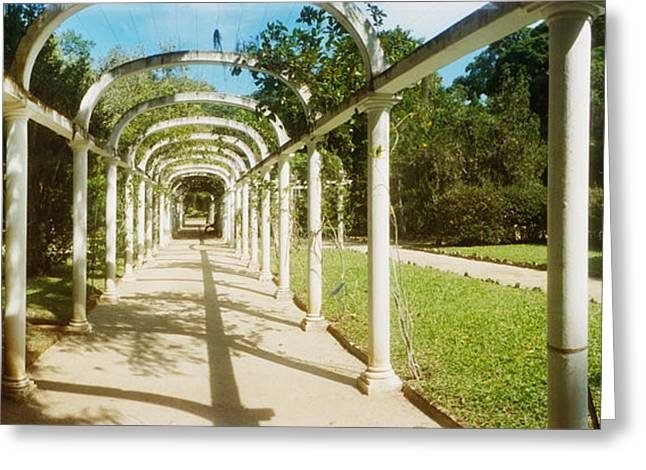 Pathway In A Botanical Garden, Jardim Greeting Card by Panoramic Images