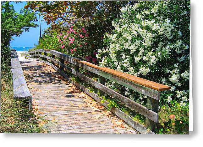 Pathway To Beach Greeting Card