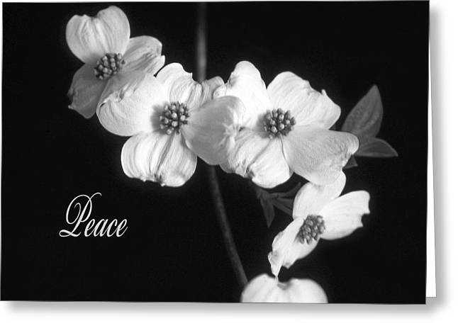 Greeting Card featuring the photograph Peace by Marion Johnson