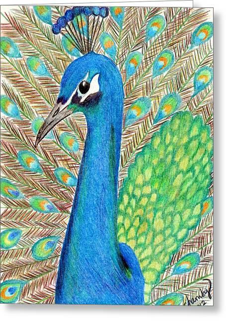 Peacock Greeting Card by Carol Hamby