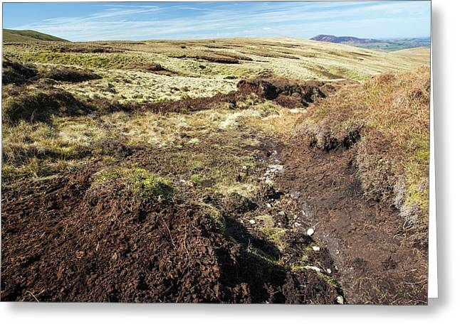 Peat Hags On King Bank Head Greeting Card