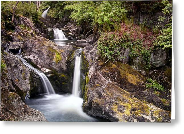 Pecca Falls Greeting Card by Chris Frost