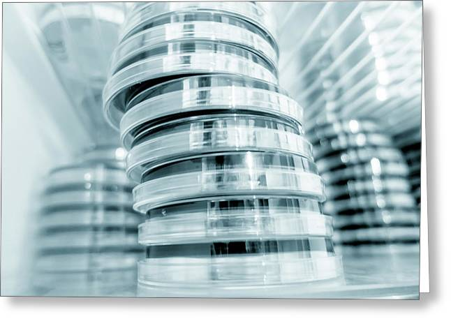 Petri Dishes In Refrigerator Greeting Card