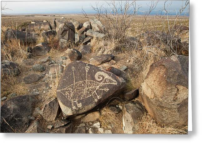 Petroglyph At The Three Rivers Greeting Card by Larry Ditto
