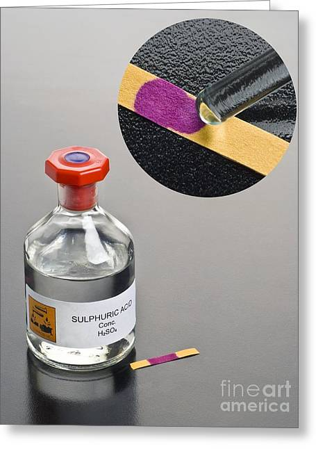 Ph Of Concentrated Sulphuric Acid Greeting Card by Martyn F. Chillmaid