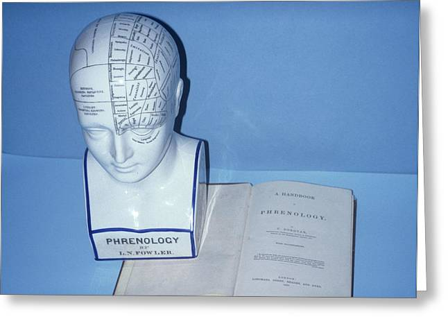 Phrenology Head Greeting Card by Science Photo Library