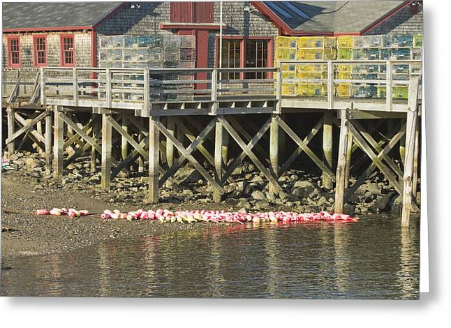 Pier In Tenants Harbor Maine Greeting Card