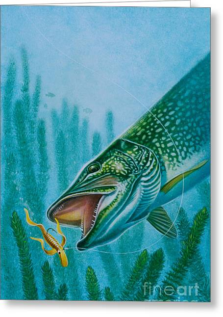Pike And Jig Greeting Card by Jon Q Wright