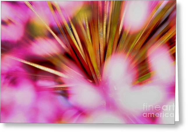 Greeting Card featuring the photograph Pink Alium by Rebeka Dove
