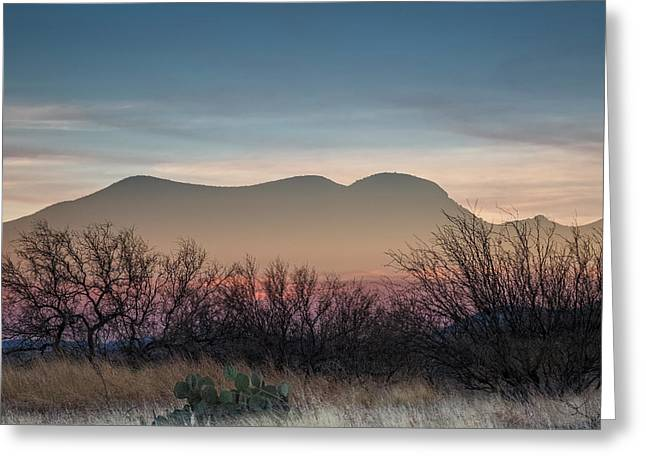 Pink In The Valley Greeting Card by Beverly Parks