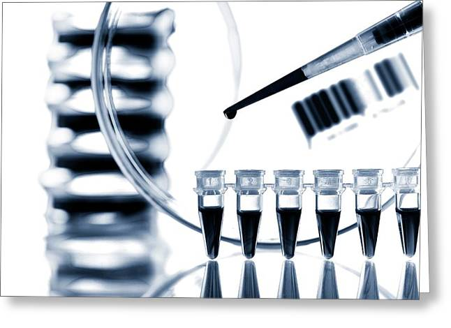 Pipette And Microtubes Greeting Card by Wladimir Bulgar