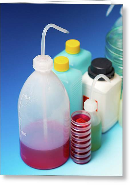 Plastic Dispensing Bottles And Containers Greeting Card by Wladimir Bulgar