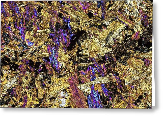 Polarised Lm Of Thin Section Of Gabbro Greeting Card by Alfred Pasieka