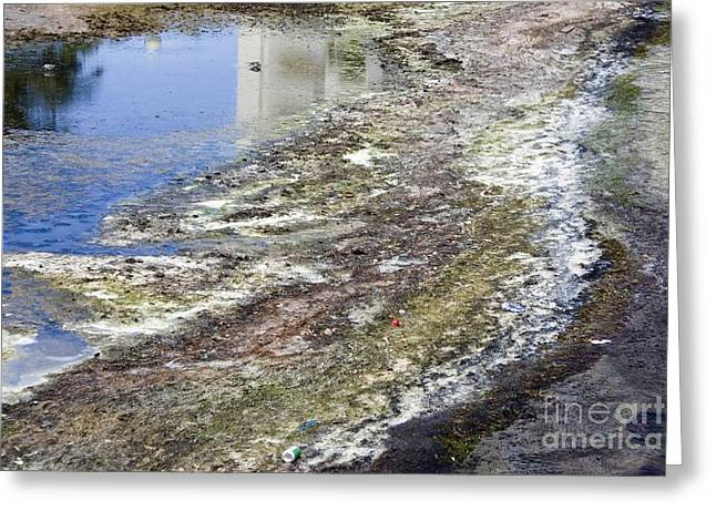 Polluted River, Usa Greeting Card by Mark Williamson