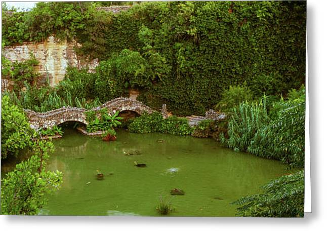 Pond In Japanese Tea Garden, San Greeting Card by Panoramic Images