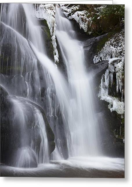 Posforth Gill Valley Of Desolation Greeting Card