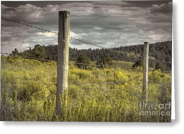 Prairie Fence Greeting Card