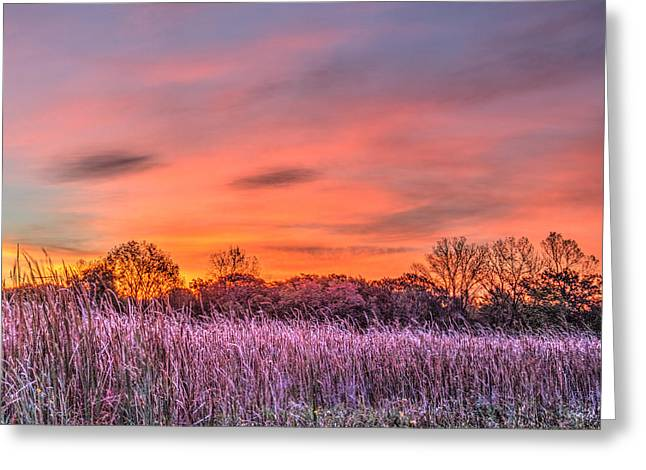 Illinois Prairie Moments Before Sunrise Greeting Card