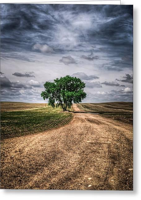 Prairie Tree Greeting Card