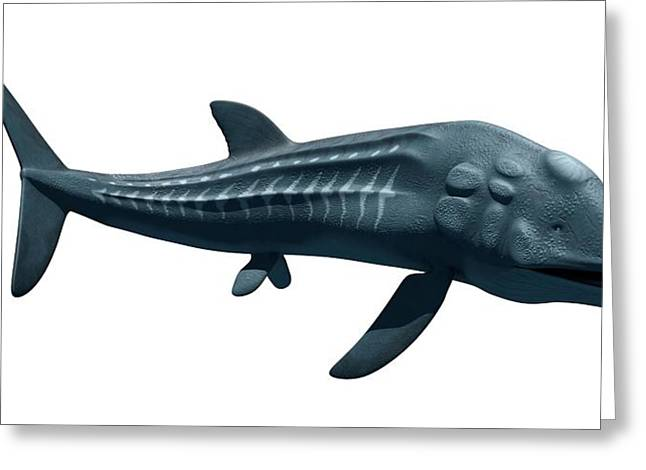 Prehistoric Sea Creature Greeting Card by Sciepro