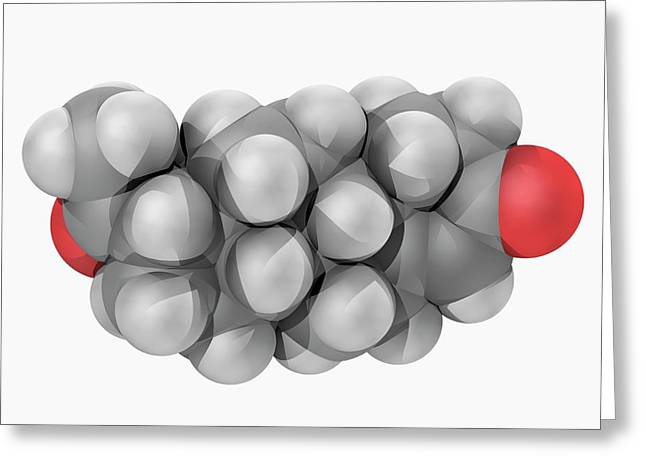 Progesterone Hormone Molecule Greeting Card by Laguna Design/science Photo Library