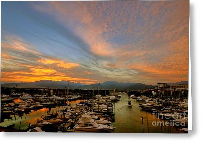 Puerto Vallarta Marina Greeting Card