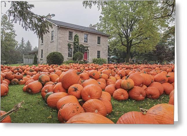 Pumpkin Farm  Greeting Card