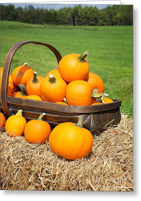 Pumpkins For Sale Greeting Card by Jane Rix
