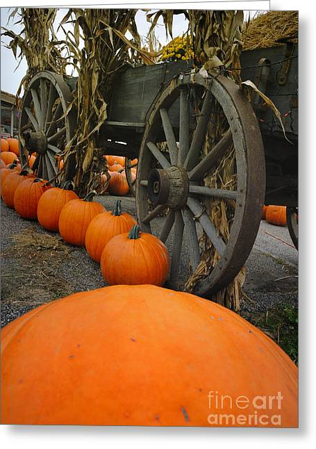 Pumpkins With Old Wagon Greeting Card by Amy Cicconi