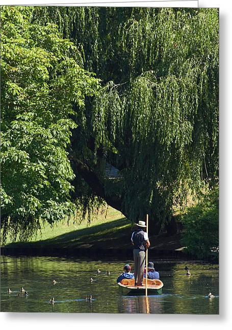 Punting On The Avon, Christchurch Greeting Card by David Wall