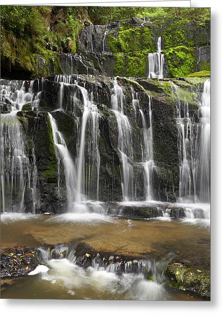 Purakaunui Falls, Catlins, South Otago Greeting Card by David Wall
