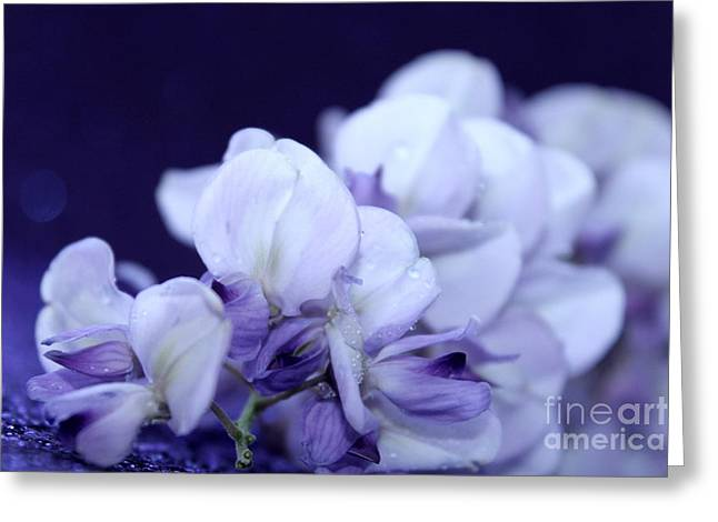 Pure Purple Greeting Card by Krissy Katsimbras