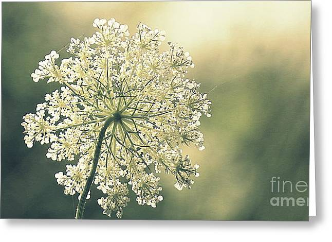 Quiet Moment Greeting Card by France Laliberte