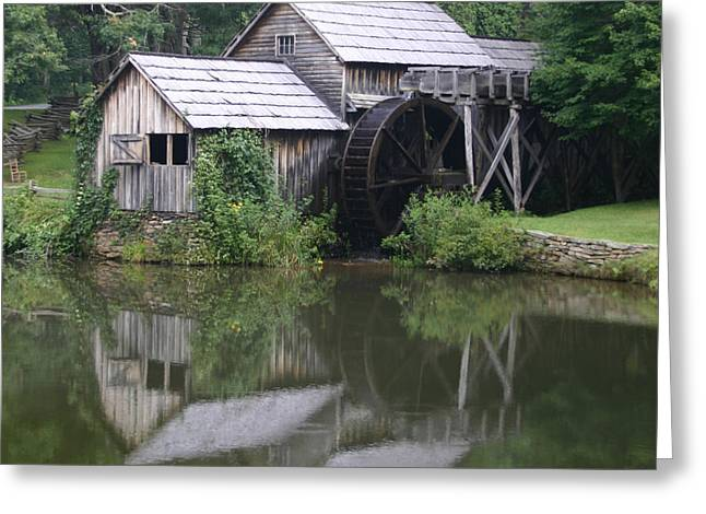Quiet Reflection Greeting Card by ELDavis Photography