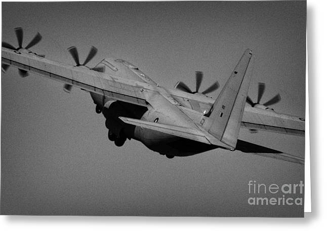 Raf Hercules C5 Tac Demo Riat 2005 Raf Greeting Card by Joe Fox