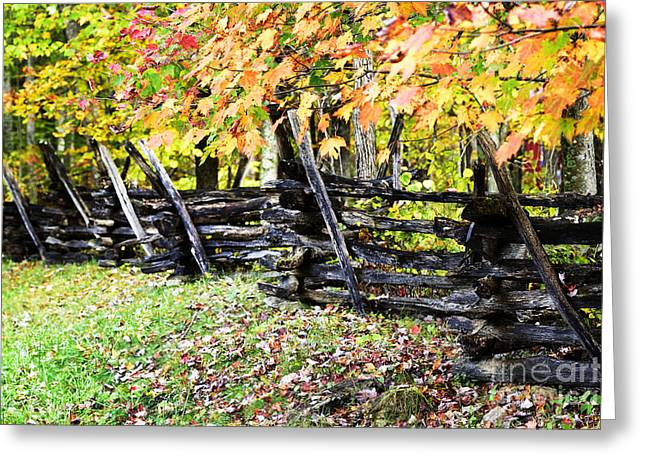 Rail Fence Fall Color Greeting Card
