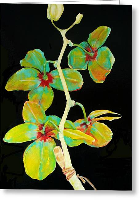 Rainbow Orchids Greeting Card by Jean Cormier