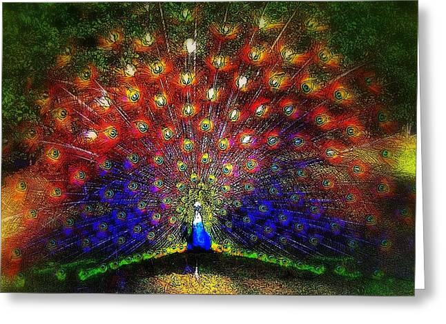 Rainbow Peacock Greeting Card by Jodie Marie Anne Richardson Traugott          aka jm-ART
