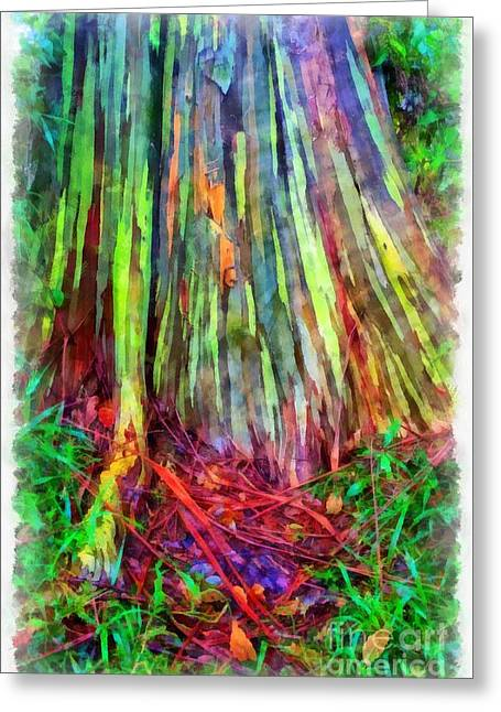 Rainbow Trees Of Maui Hawaii Greeting Card