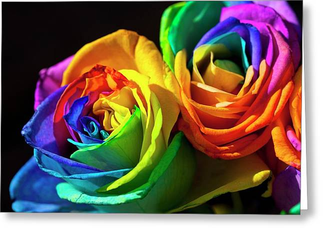 Rainbowed Roses Greeting Card by Ian Gowland