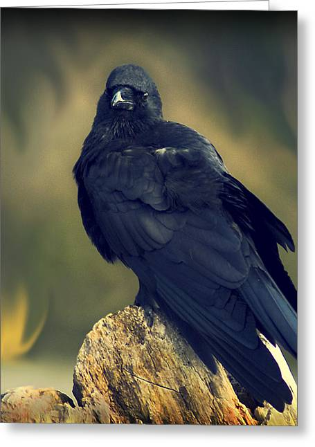 Greeting Card featuring the photograph Raven by Yulia Kazansky