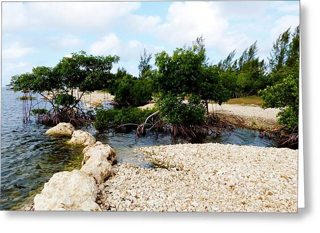 Greeting Card featuring the photograph Reclamation 6 by Amar Sheow
