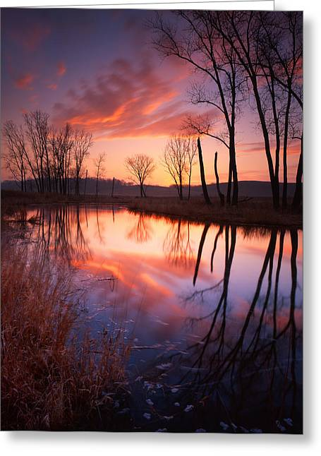 Red Dawn Greeting Card by Ray Mathis