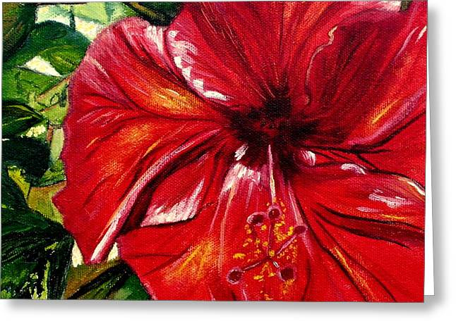 Red Hibiscus Greeting Card by Maria Soto Robbins