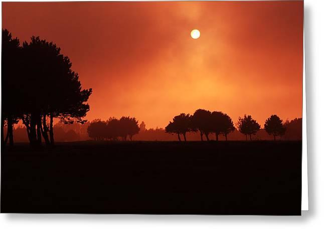 Red Mist Greeting Card by Aidan Moran