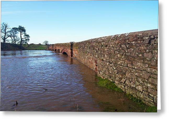 River Eden Flooding. Greeting Card by Mark Williamson